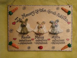 3d Pet Memorial Plaque Any 3 characters Rabbit, Guinea Pig, Cat,  Dog, Reptile Personalised Sign Handmade
